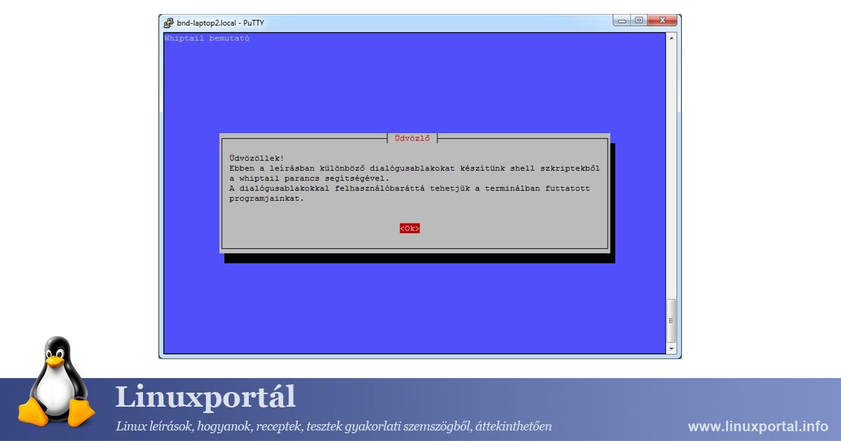 Whiptail Demo Linux Portal