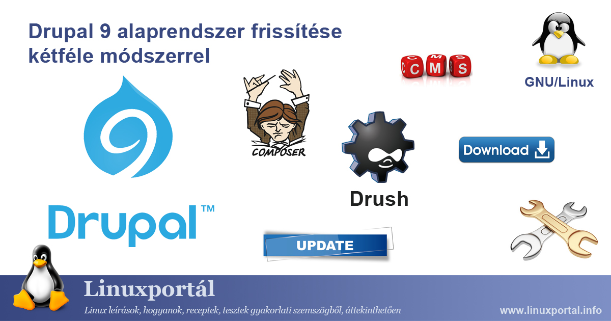 Upgrading the Drupal 9 base system in two ways Linux portal