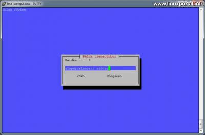 Whiptail - Input box bemutatása