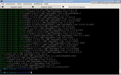 Debian APT csomagkezelő szimulációs futtatása