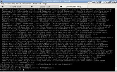 Debian APT upgrade parancs futása, már az új csomagtárakkal