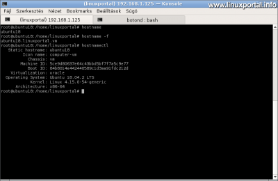 Ubuntu 18.04 LTS (Bionic Beaver) - Hosztnév ellenőrzése