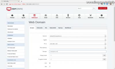 ISPConfig - Új webhely - Domain fül