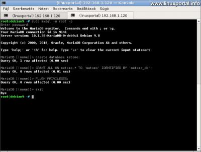 Matomo adatbázis és felhasználó létrehozása a konzolban