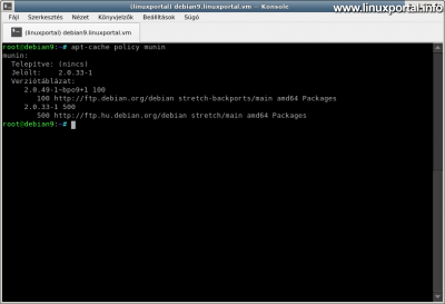 Checking the Munin package on Debian 9 (Stretch)
