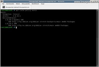 Munin csomag ellenőrzése Debian 9 (Stretch) rendszeren