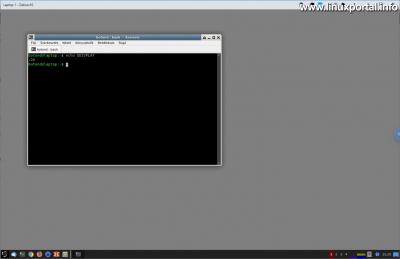 Chrome Remote Desktop - DISPLAY változó lekérdezése a távirányított munkamenetben